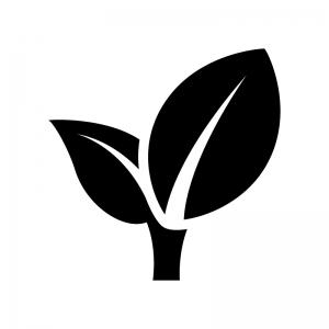 2枚の葉っぱ・植物の白黒シルエットイラスト02