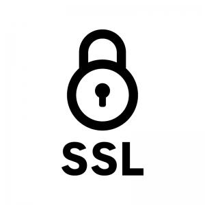 SSL通信の白黒シルエットイラスト02