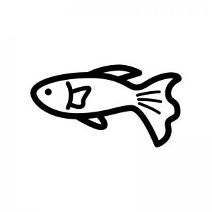 熱帯魚・グッピーの白黒シルエットイラスト