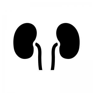 腎臓の白黒シルエットイラスト
